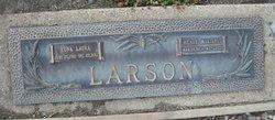 Henry Martinius Larson