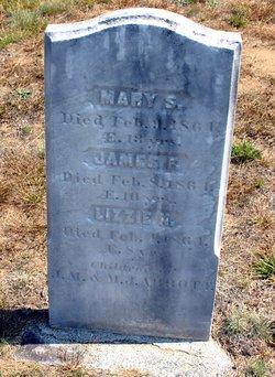 """Eliza N. """"Lizzie"""" Abbott"""
