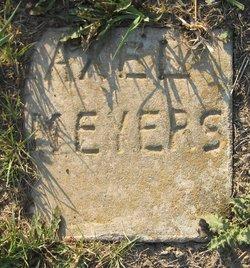 Axel Meyers