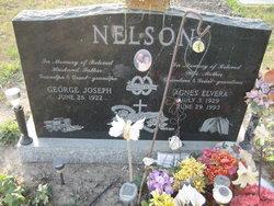 Agnes Elvera Nelson