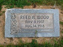 Reed A Wood
