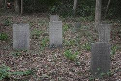 Raynor-Robinson Cemetery