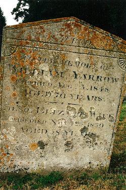William Yarrow