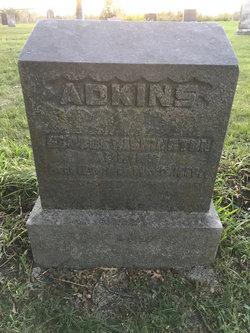 George Washington Adkins