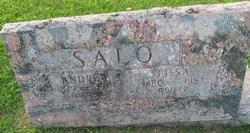 Andrew Salo