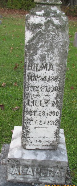 Lilly M Alapera