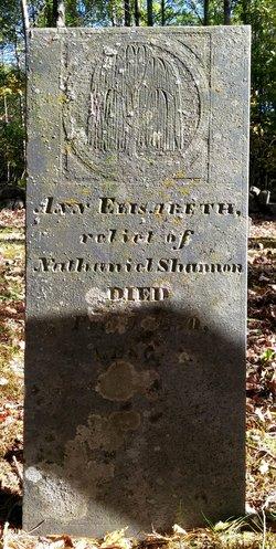 Ann Elisabeth <I>Peverly</I> Shannon