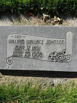 William Wallace Johnson, Jr