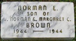 Norman E Brown