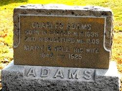Mary B <I>Hill</I> Adams