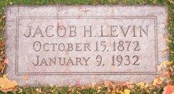 Jacob H Levin