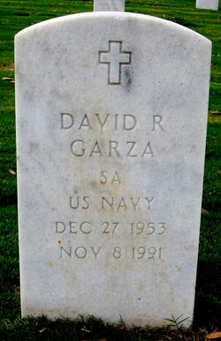 David R Garza