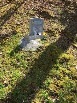 Tommy Lee Jenkins Grave