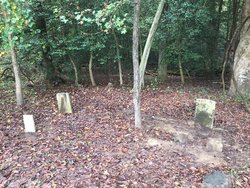 Shelton Family Cemetery
