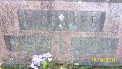 Rosie Mary <I>Chambers</I> Webster