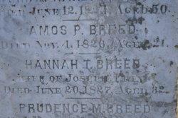 Hannah T. <I>Breed</I> Frink