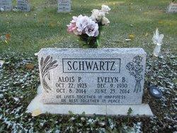 Alois Peter Schwartz