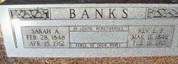 Sarah Ann <I>Lloyd</I> Banks