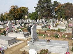 Tiszaszentimre temető