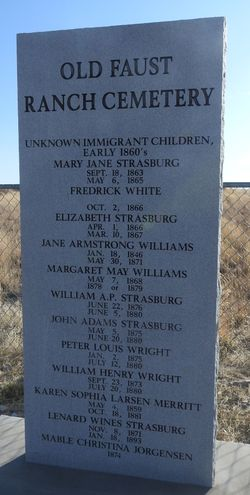 Jane Armstrong Williams