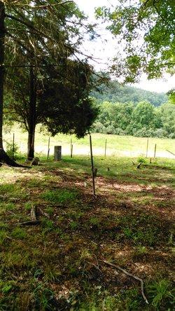 Poindexter Freeman Cemetery