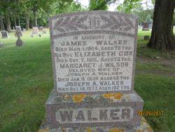Margaret J. <I>Wilson</I> Walker