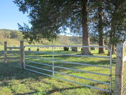 Eck Davis Cemetery