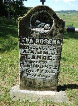 Eva Rosena Lange