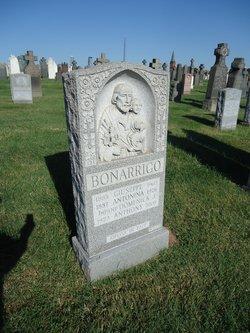 Domenick J. Bonarrigo