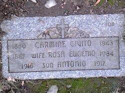 Rosa <I>Eugenio</I> Civito
