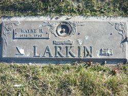 Wayne H Larkin