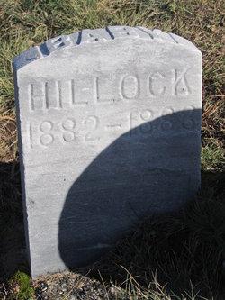 Baby Hillock