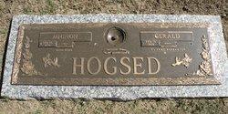 Gerald Hogsed