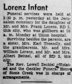 Still Born Female Lorenz