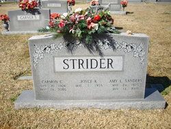 Amy L <I>Sanders</I> Strider