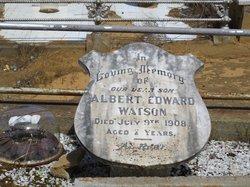 Albert Edward Watson