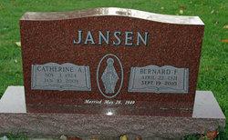 Bernard F Jansen