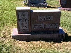 Robert J Ganc
