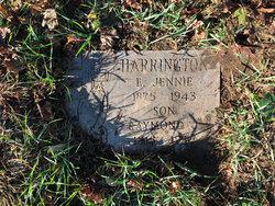 Raymond J Harrington