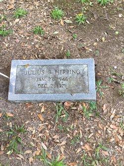 Julius B. Herring