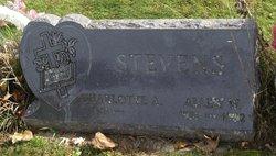 Allen W Stevens