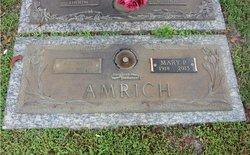 Mary P. Amrich