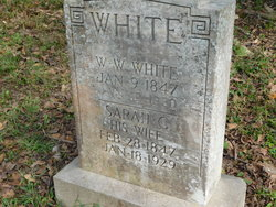 William Washington White