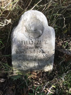 William T. Hooper