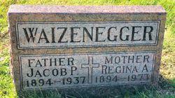 Regina A. Waizenegger
