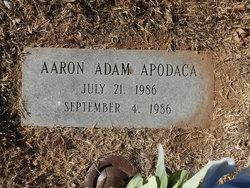 Aaron Adam Apodaca