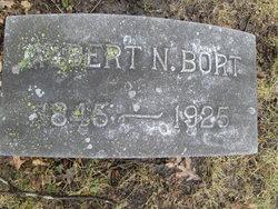 Albert N Bort