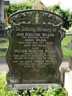 Jane Heseltine <I>Stirk</I> Wilson
