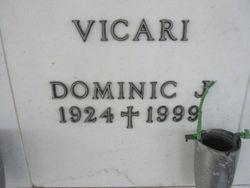 Dominick J Vicari