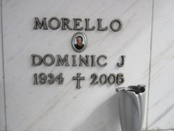 Dominic J Morello